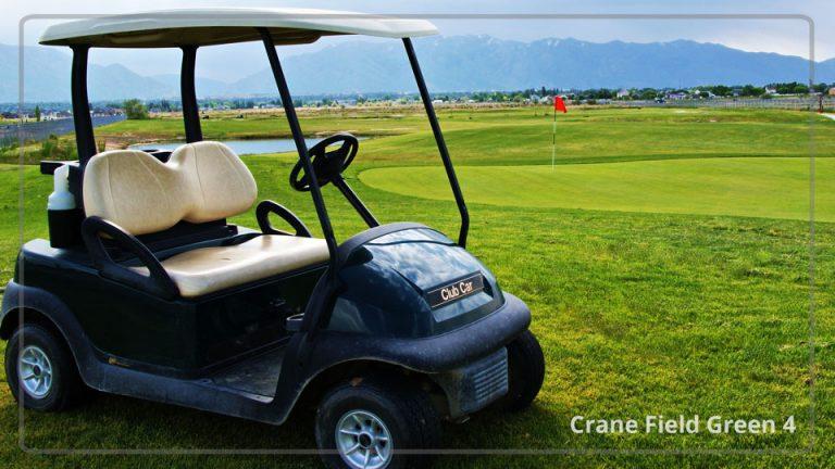 Crane field golf green 4